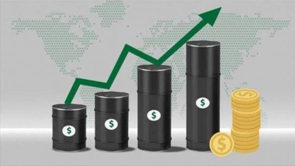 y-nghia-crude-oil
