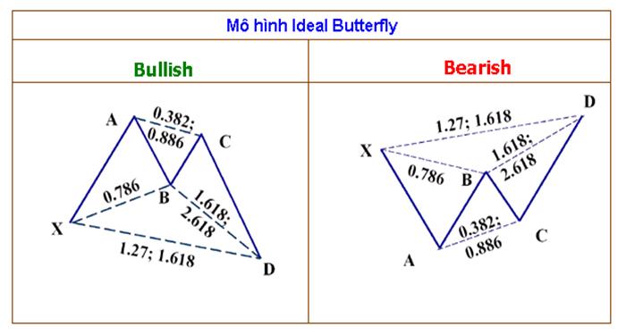 mô hình cánh bướm